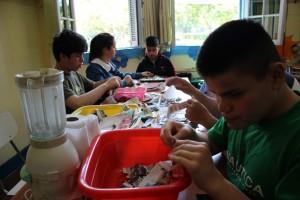Vacantes en la Escuela Especial Jan Van Dijk